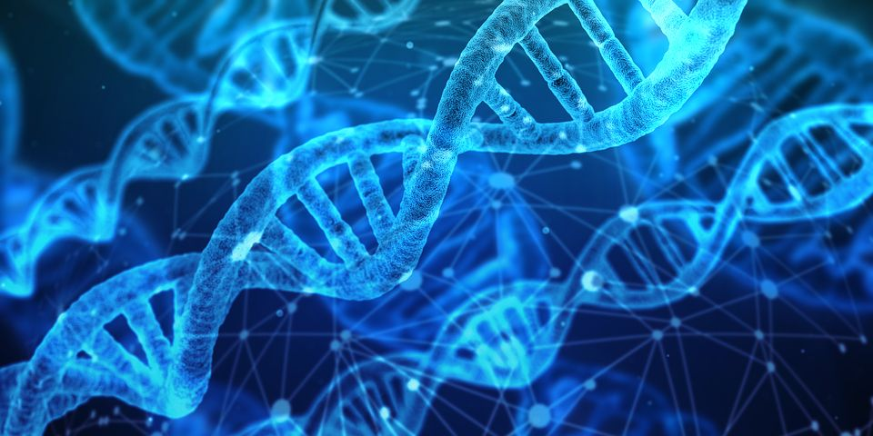 Genes and You. How DNAtix is making a difference to Genetics